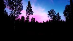 Evening by Ingemar Pongratz