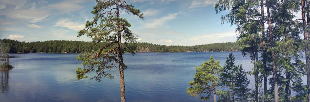 Tyresta National Park 2016 by Ingemar Pongratz